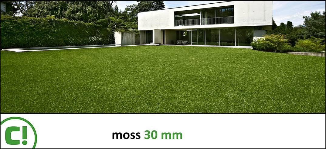 02 B Moss 30mm Titel 1074x493px 150dpi Nieuwe Foto