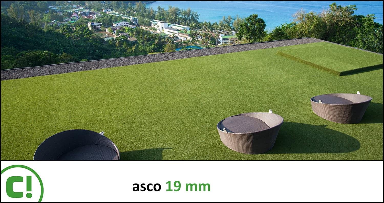 02 Asco 19mm Titel 1500x793px 150dpi