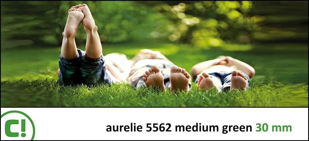 04 Aurelie 5562 Med Green 30mm Titel 1074x493 150dpi