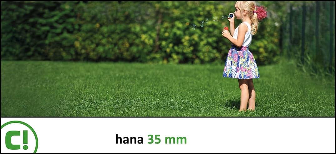 12 Hana 35mm 1074 X 493px 150dpi Title