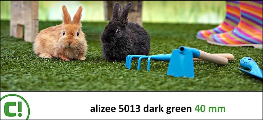02 Alizee5013 Dark Green 40mm Titel 1074x493px 150dpi