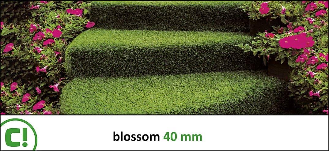 04 Blossom 40mm Titel 1074x493px 150dpi