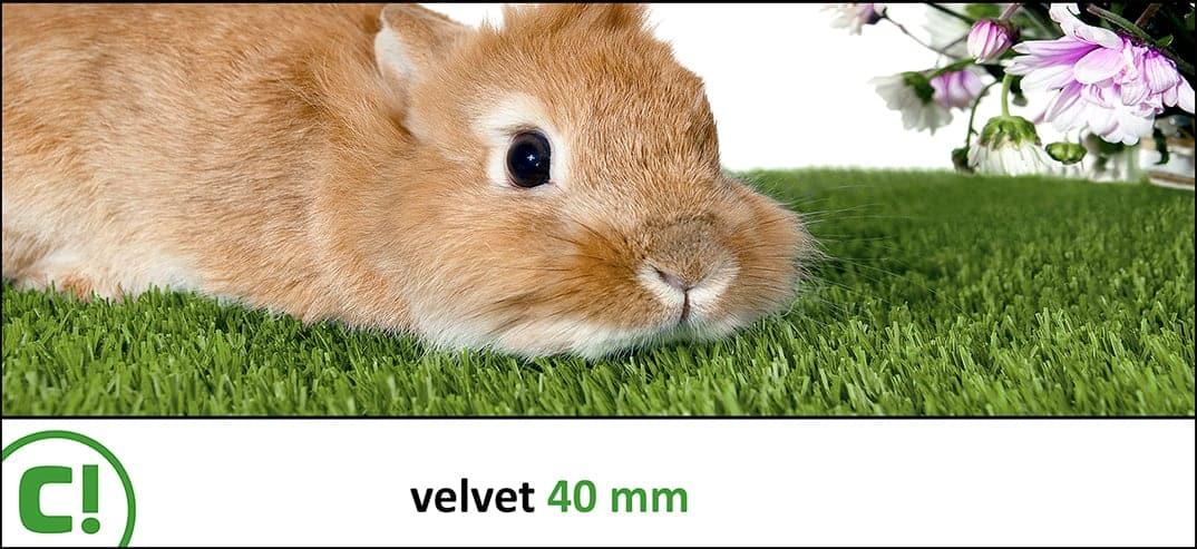 11 Velvet 40mm Titel 1074x493px 150dpi