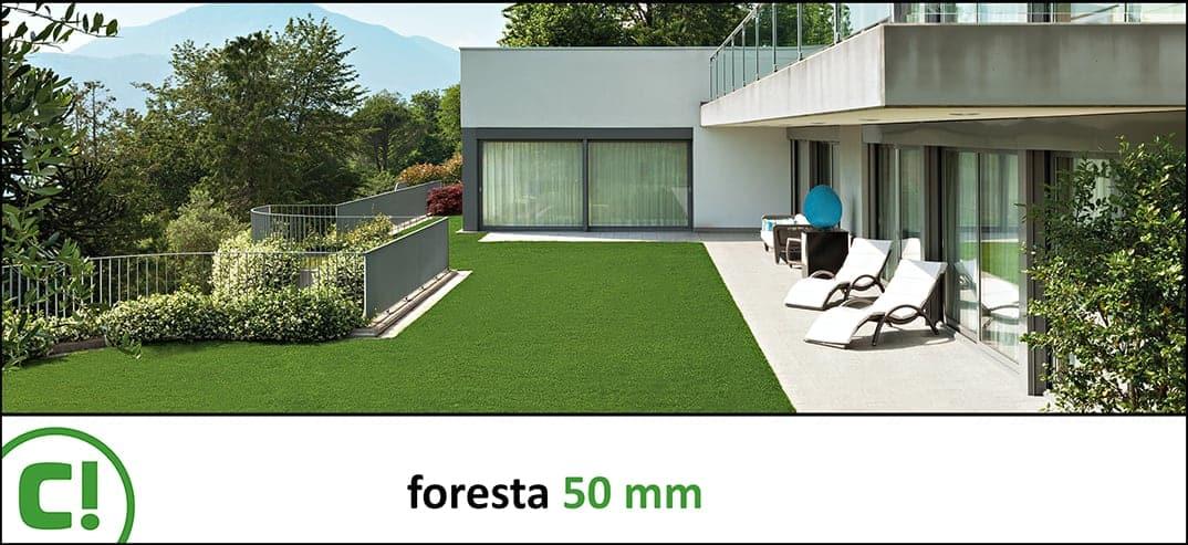 12 Foresta 50mm Titel 1074x493px 150dpi
