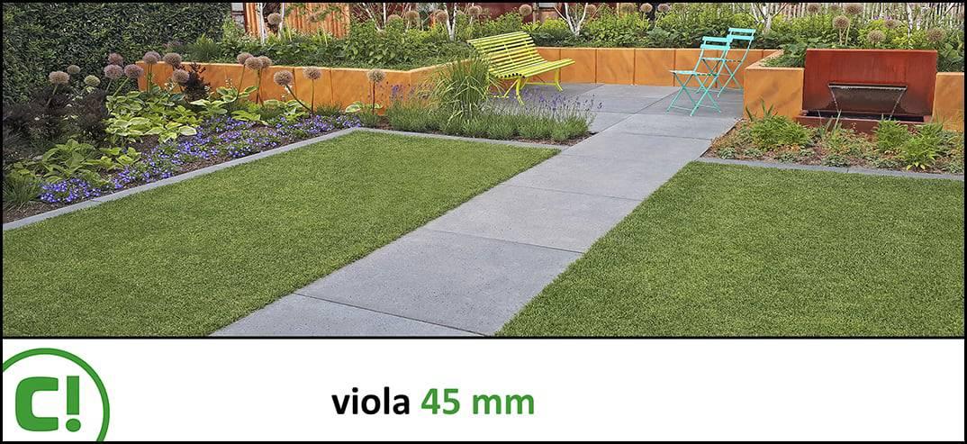 12 Viola 45mm Titel 1074x493px 150dpi