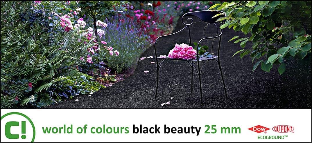 07 Woc Black Beauty 25mm 1074x493px 150dpi Title