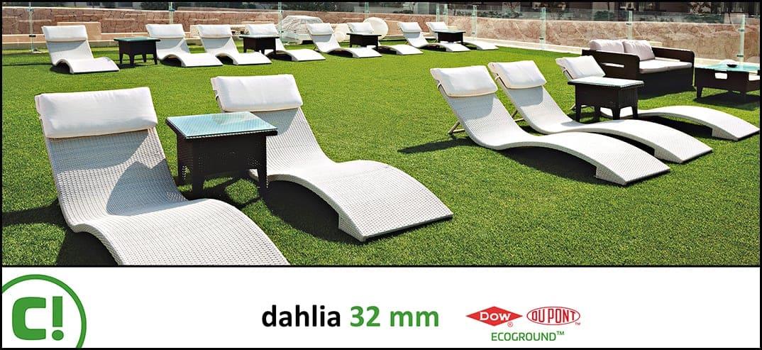 Dahlia 32 Mm 2300 X 1910px 150dpi Title