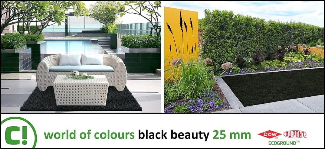 05 Black Beauty 25mm Rugrun 1074x493px 150dpi Title