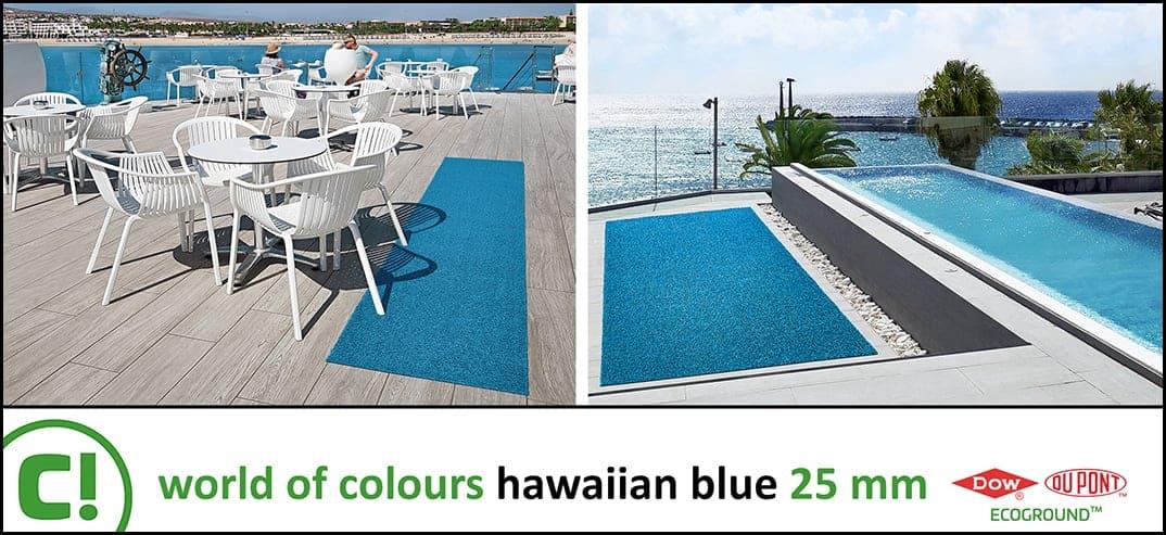 06 Hawaiian Blue 25mm Rugrun 1074x493px 150dpi Title